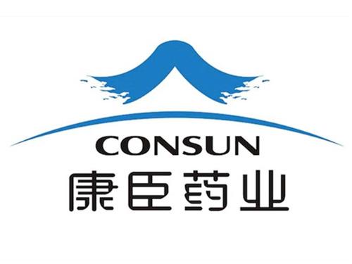 广州康臣药业-代理记账服务